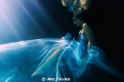 Elsa Bleda shot in pool. Underwater strobe triggered flas... by Alec Davies 